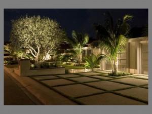 Led lighting , Outdoor landscape lighting. architectural lighting. OC lighting