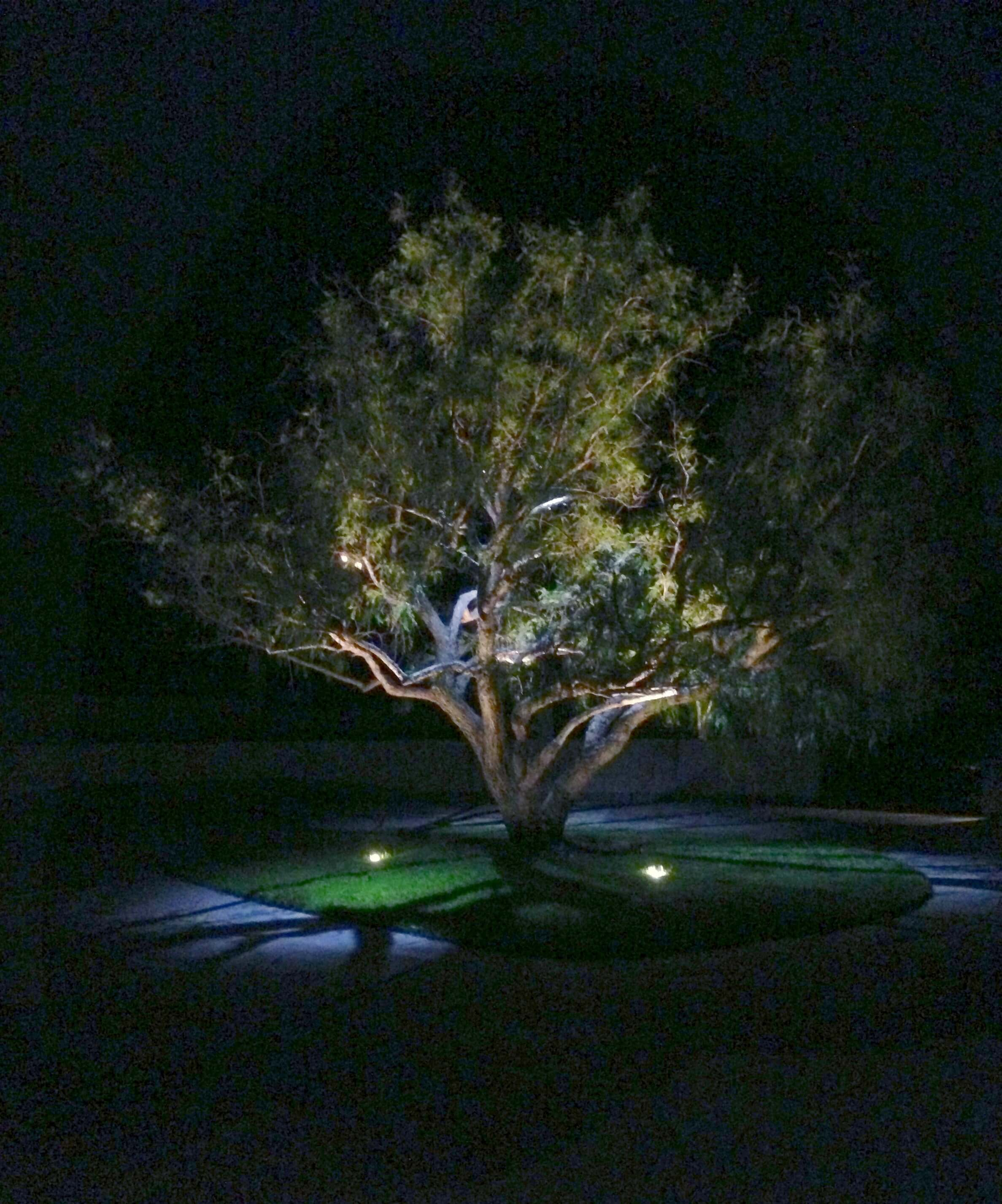 How to hire a landscape lighting contractor illuminated for Outdoor lighting concepts