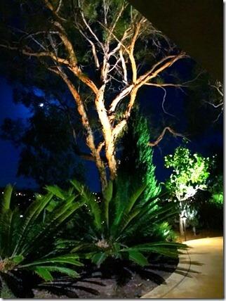 Orange County landscape lighting