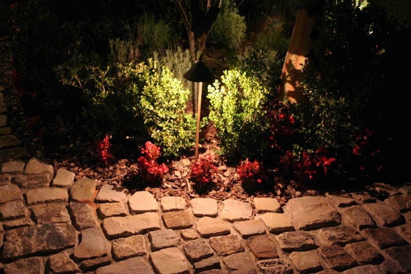 Down Lighting on Shrubs near Pathway