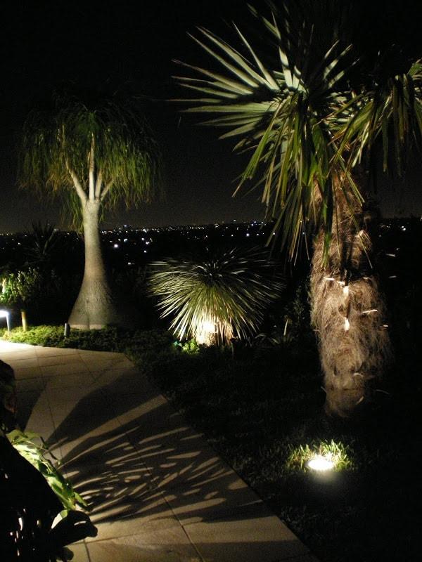 Shadow Lighting on Pathway
