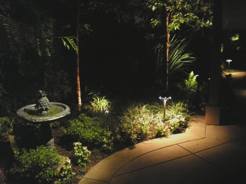 Pool Lighting near Pergola