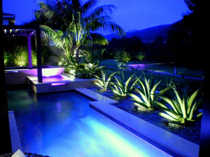 Lightings for Pool and the plants around