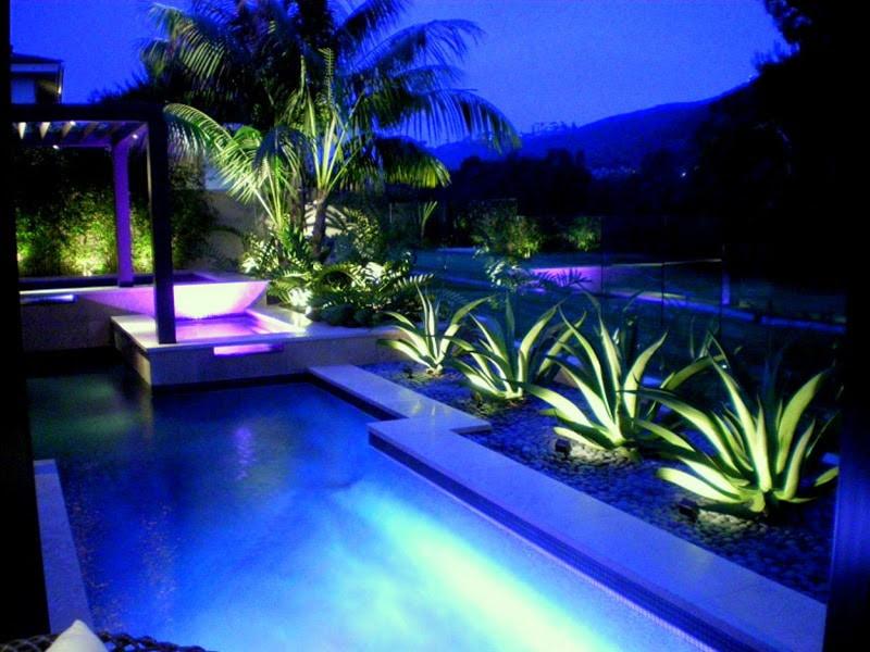 Lightings for Pool and the plants around
