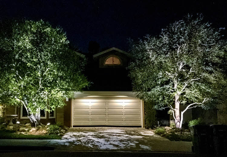 Moon Lighting for Trees