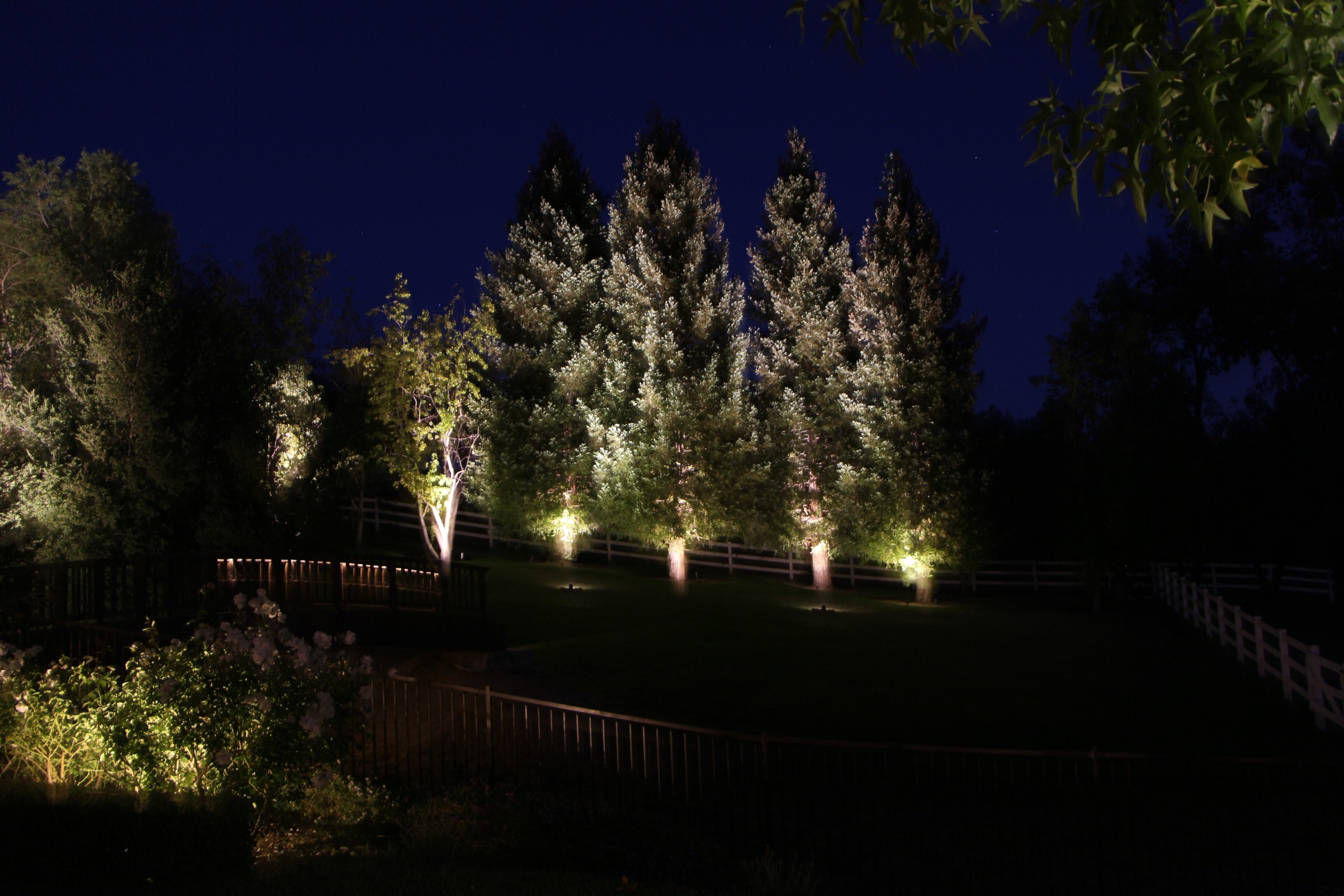 Free Real Estate Lighting 3