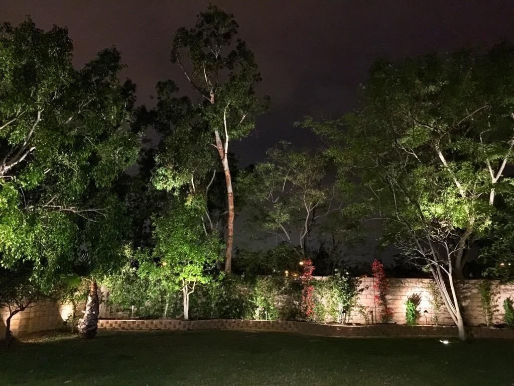 Free Real Estate Lighting 1