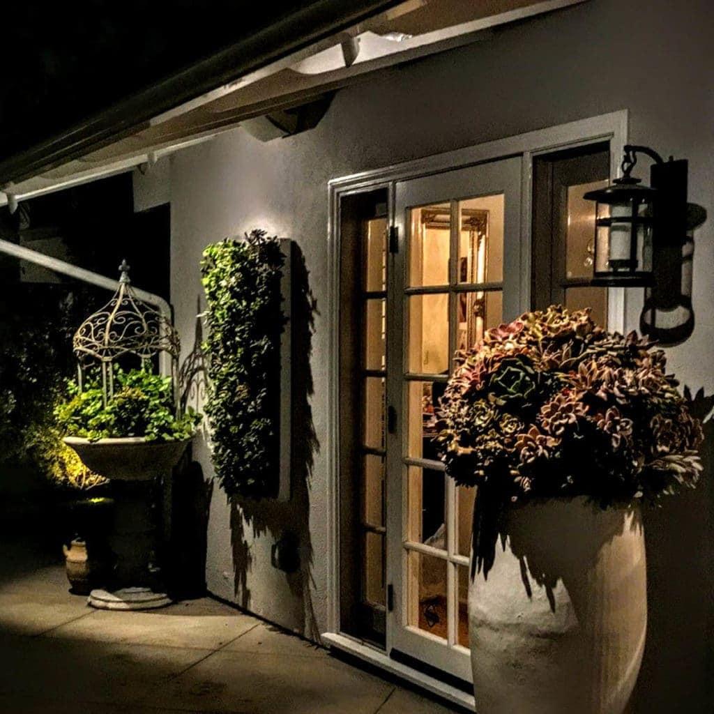 Potted Plant Lighting Laugana hills & Orange County Ca